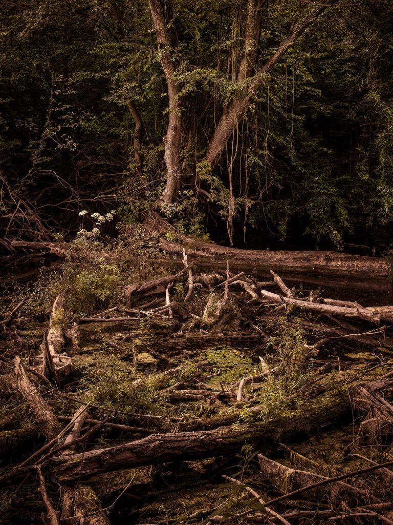 peter podpera landscape photography sacred places 9025461