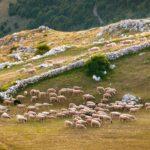 podpera landscape photography montenegro durmitor 9